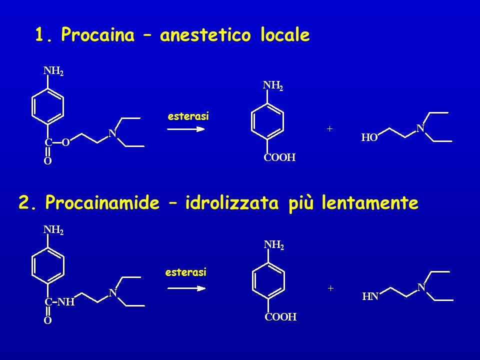 1. Procaina – anestetico locale 2. Procainamide – idrolizzata più lentamente esterasi
