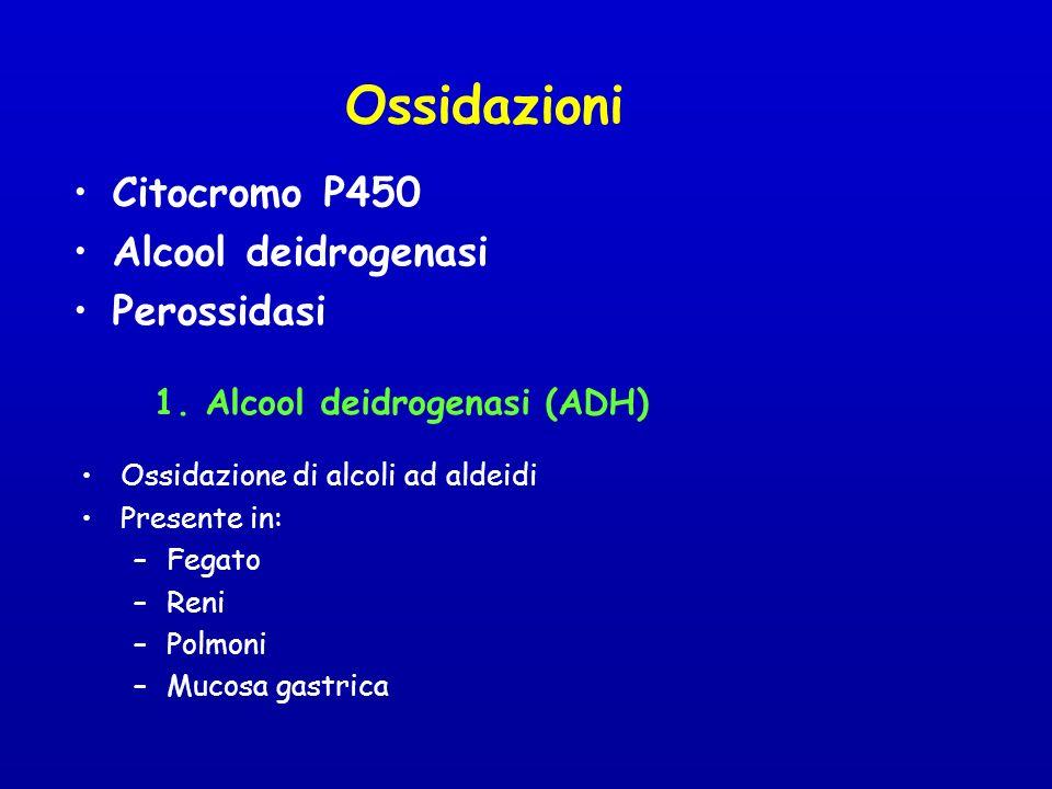 Ossidazioni Citocromo P450 Alcool deidrogenasi Perossidasi 1.