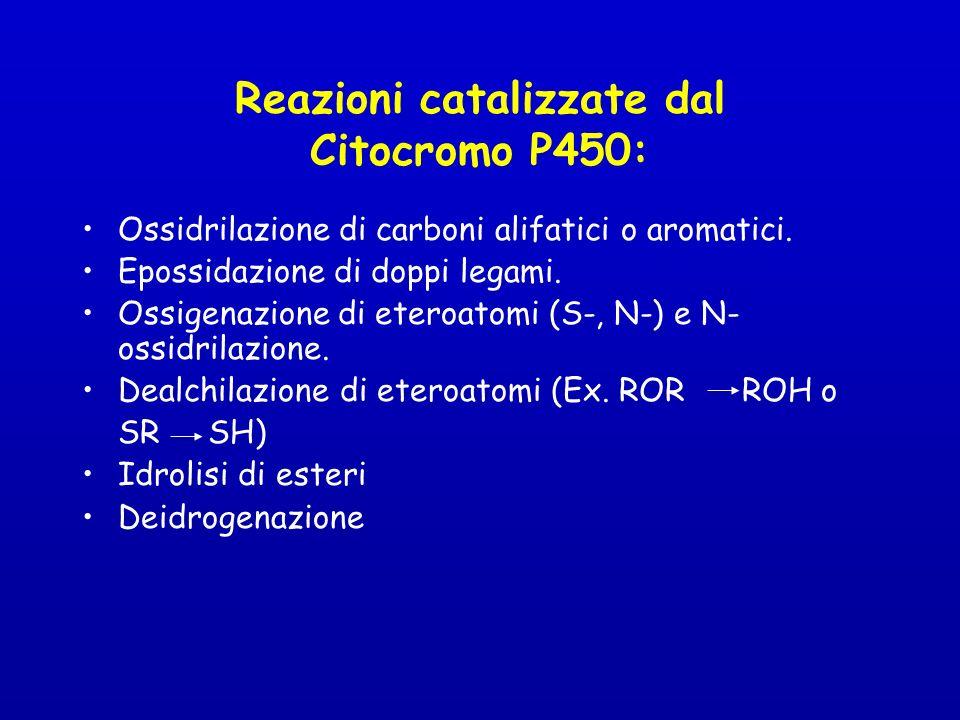 Ossidrilazione di carboni alifatici o aromatici.Epossidazione di doppi legami.