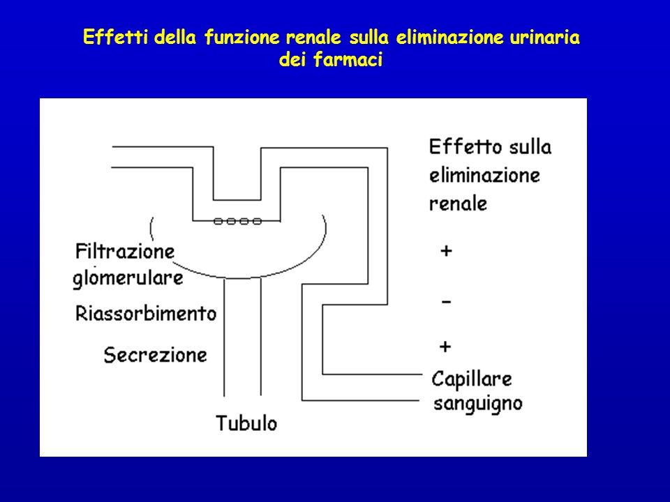 Effetti della funzione renale sulla eliminazione urinaria dei farmaci