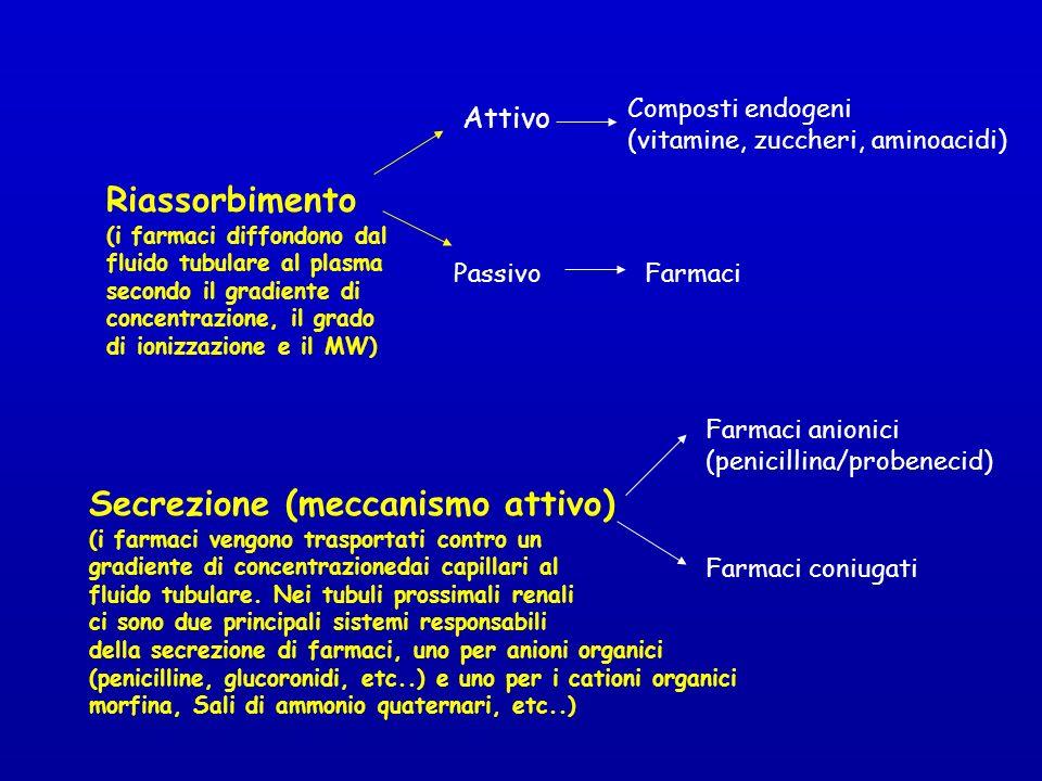 Riassorbimento (i farmaci diffondono dal fluido tubulare al plasma secondo il gradiente di concentrazione, il grado di ionizzazione e il MW) Attivo Composti endogeni (vitamine, zuccheri, aminoacidi) PassivoFarmaci Secrezione (meccanismo attivo) (i farmaci vengono trasportati contro un gradiente di concentrazionedai capillari al fluido tubulare.