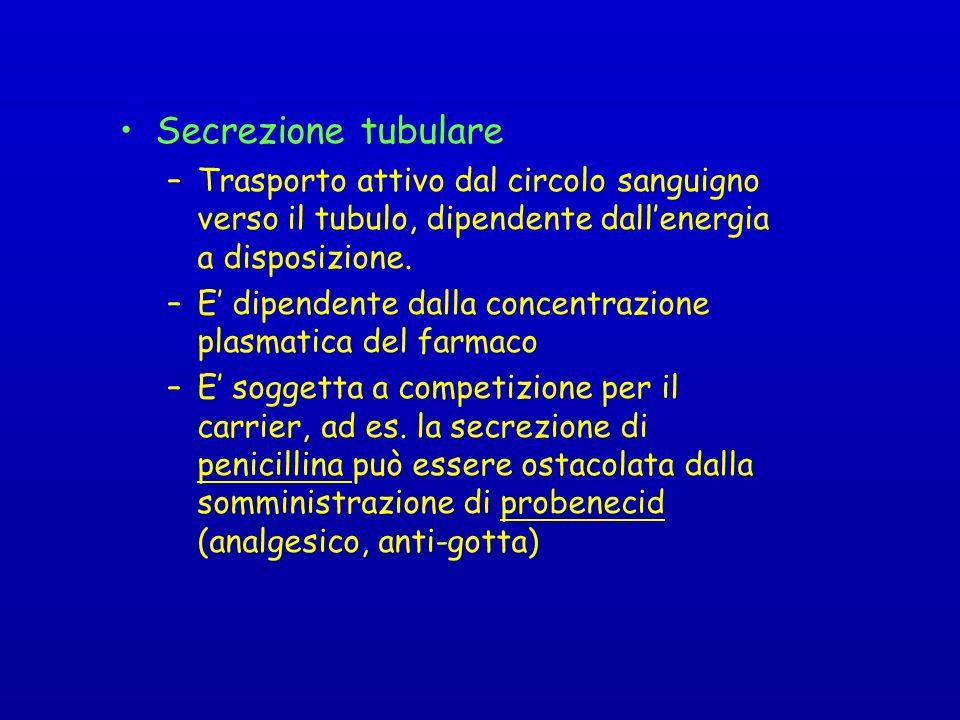 Secrezione tubulare –Trasporto attivo dal circolo sanguigno verso il tubulo, dipendente dallenergia a disposizione.