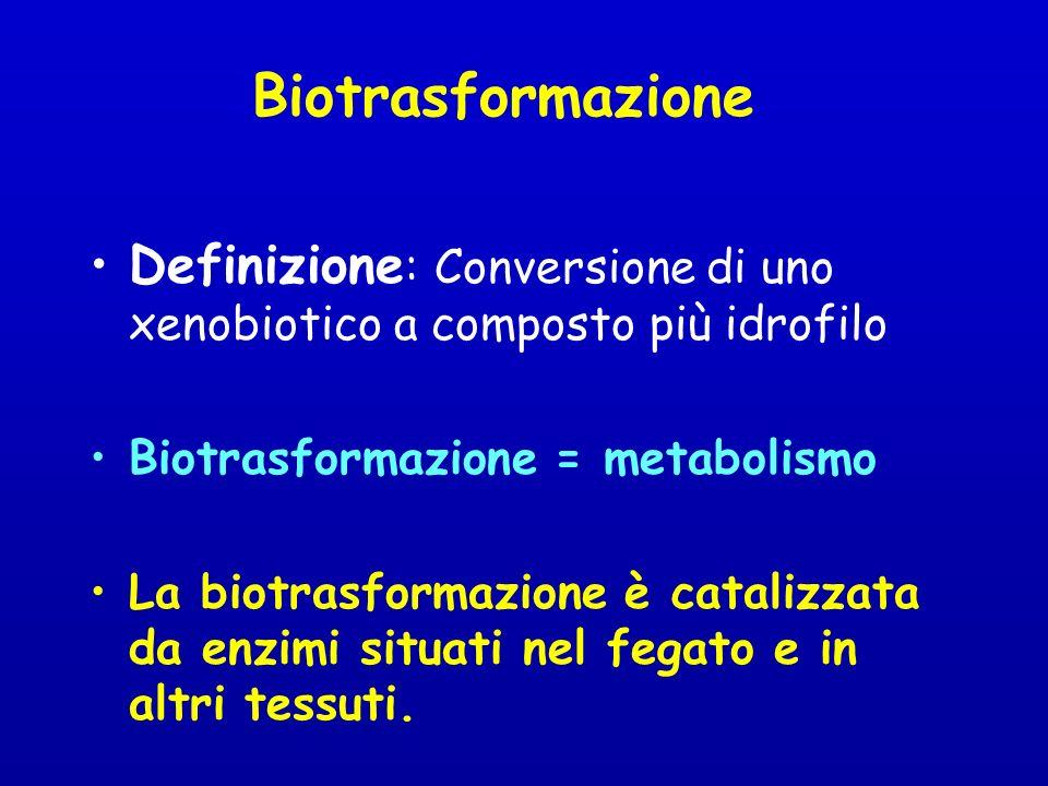 Biotrasformazione Definizione : Conversione di uno xenobiotico a composto più idrofilo Biotrasformazione = metabolismo La biotrasformazione è catalizzata da enzimi situati nel fegato e in altri tessuti.