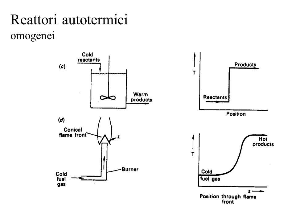 Reattori autotermici omogenei