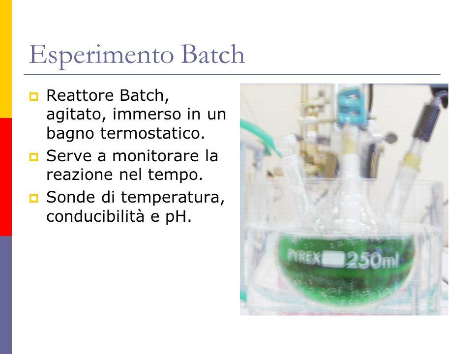 Esperimento Batch Reattore Batch, agitato, immerso in un bagno termostatico. Serve a monitorare la reazione nel tempo. Sonde di temperatura, conducibi