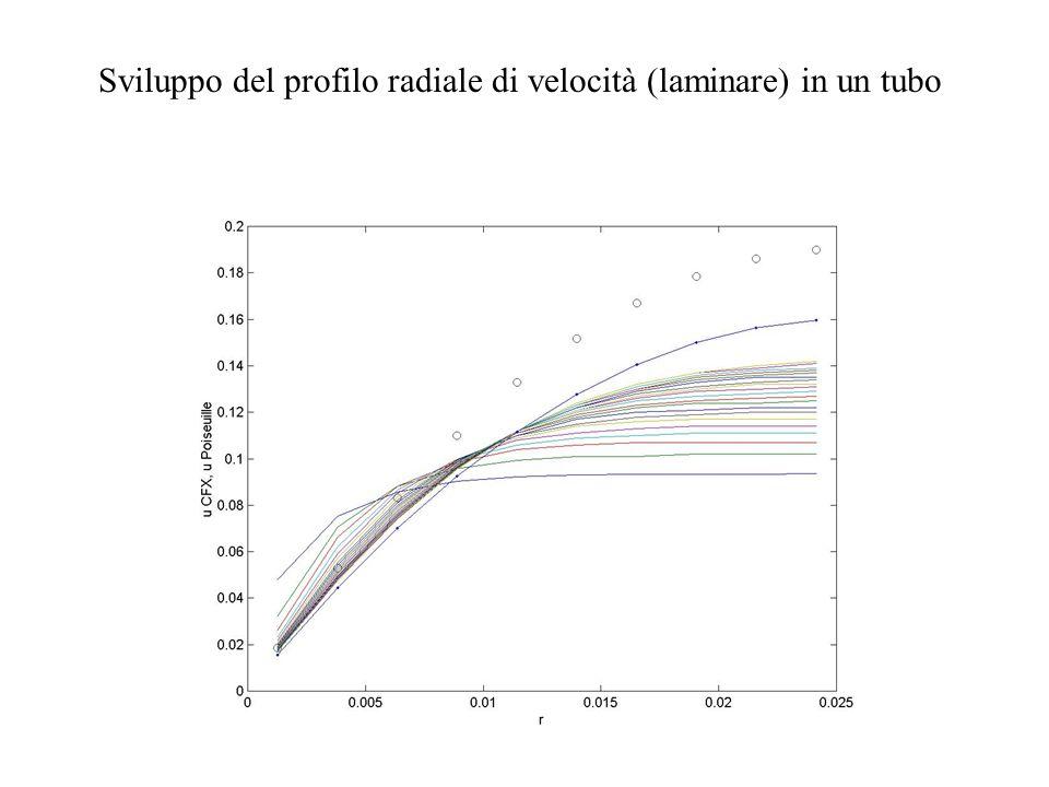 Sviluppo del profilo radiale di velocità (laminare) in un tubo