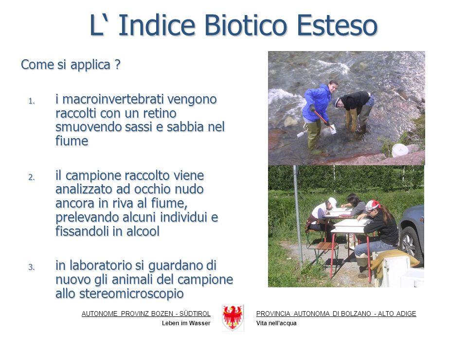 L Indice Biotico Esteso Come si applica .Come si applica .