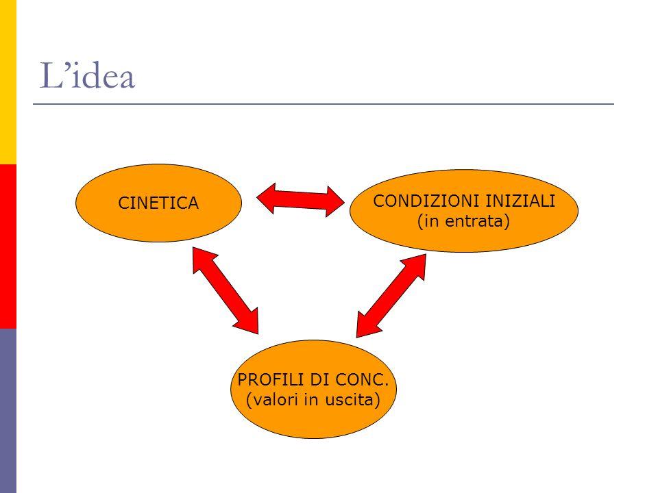 Lidea CINETICA PROFILI DI CONC. (valori in uscita) CONDIZIONI INIZIALI (in entrata)