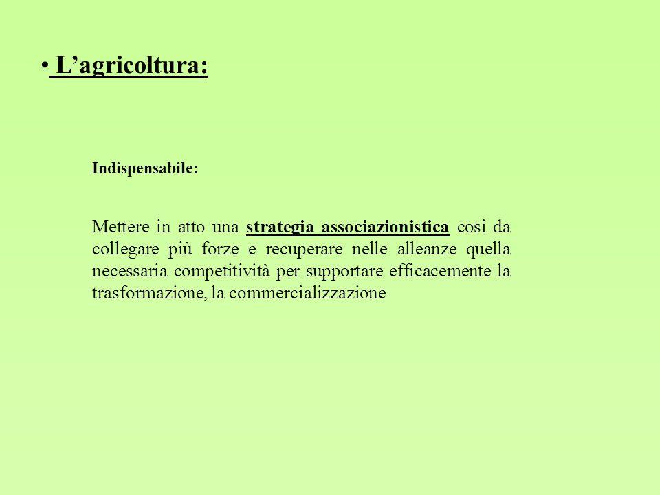 Lagricoltura: Indispensabile: Mettere in atto una strategia associazionistica cosi da collegare più forze e recuperare nelle alleanze quella necessari