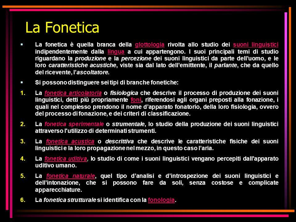 La Fonetica La fonetica è quella branca della glottologia rivolta allo studio dei suoni linguistici indipendentemente dalla lingua a cui appartengono.