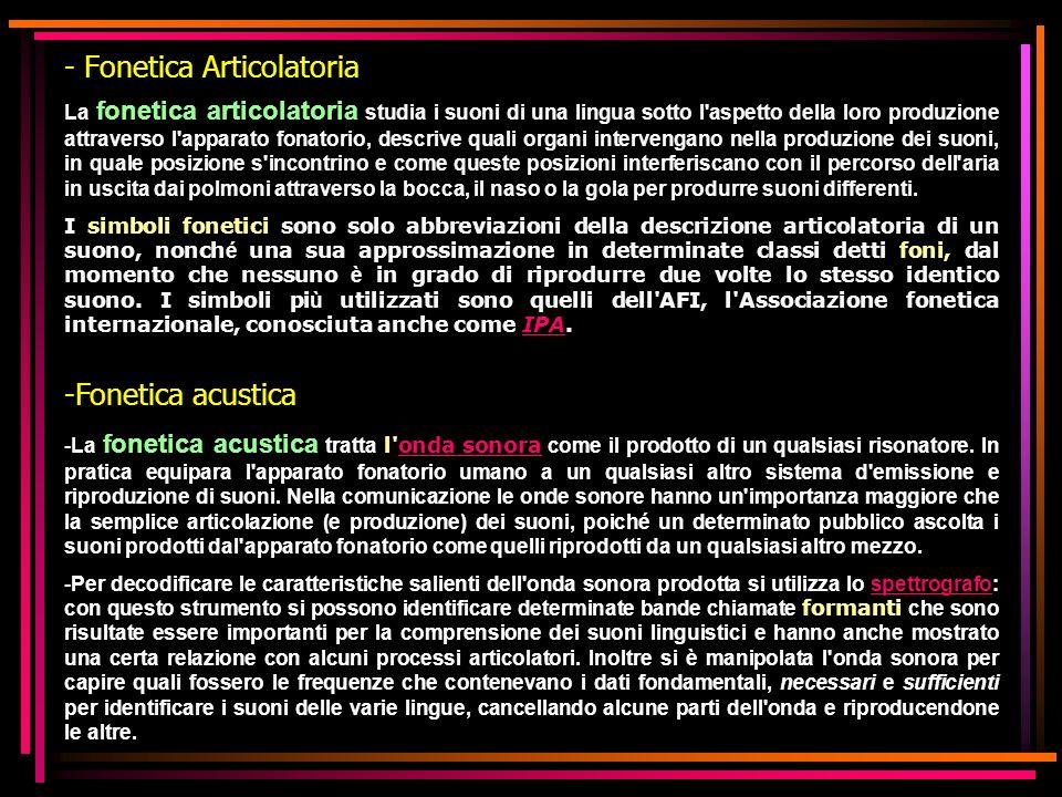 - Fonetica Articolatoria La fonetica articolatoria studia i suoni di una lingua sotto l'aspetto della loro produzione attraverso l'apparato fonatorio,