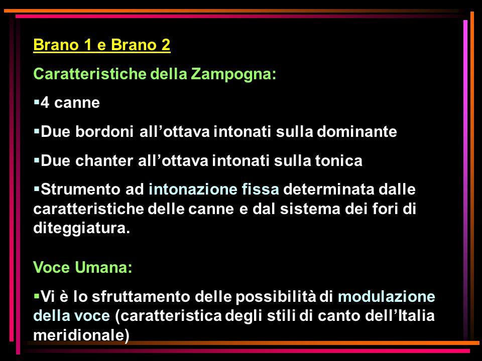 Brano 1 e Brano 2 Caratteristiche della Zampogna: 4 canne Due bordoni allottava intonati sulla dominante Due chanter allottava intonati sulla tonica S