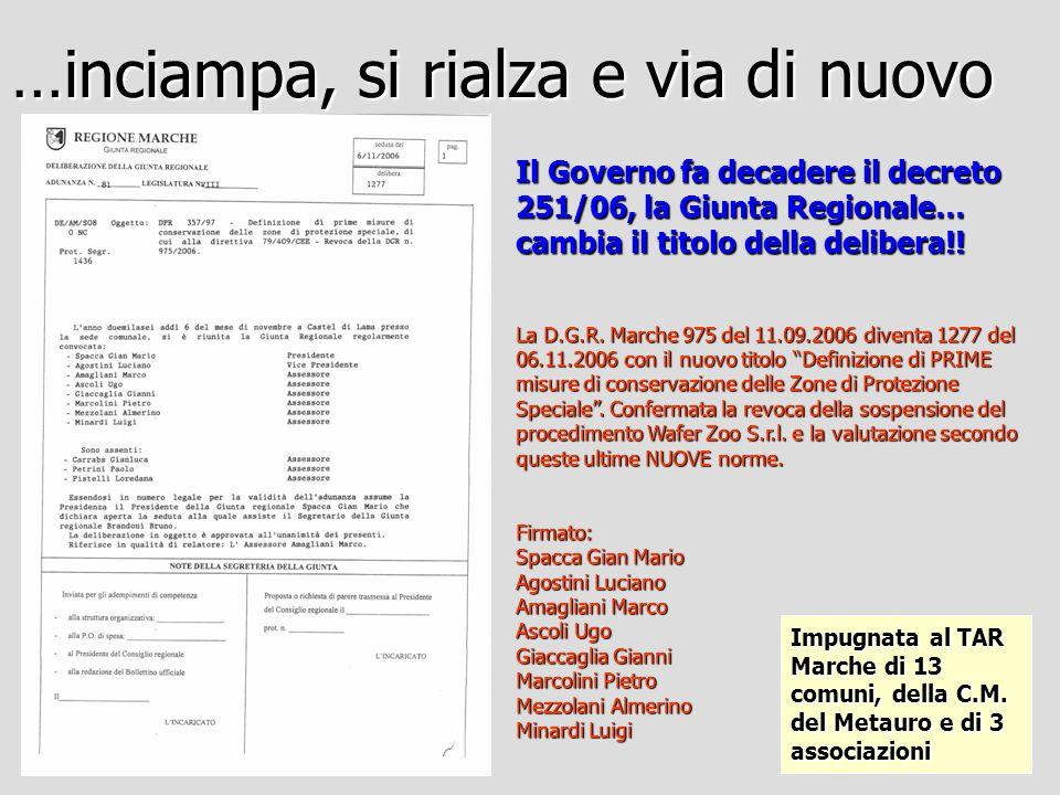 Un curioso decreto del Dirigente del Servizio Ambiente e Difesa del Suolo (DDS 95/S08 del 30.10.06) dispone la conferma dellArch.