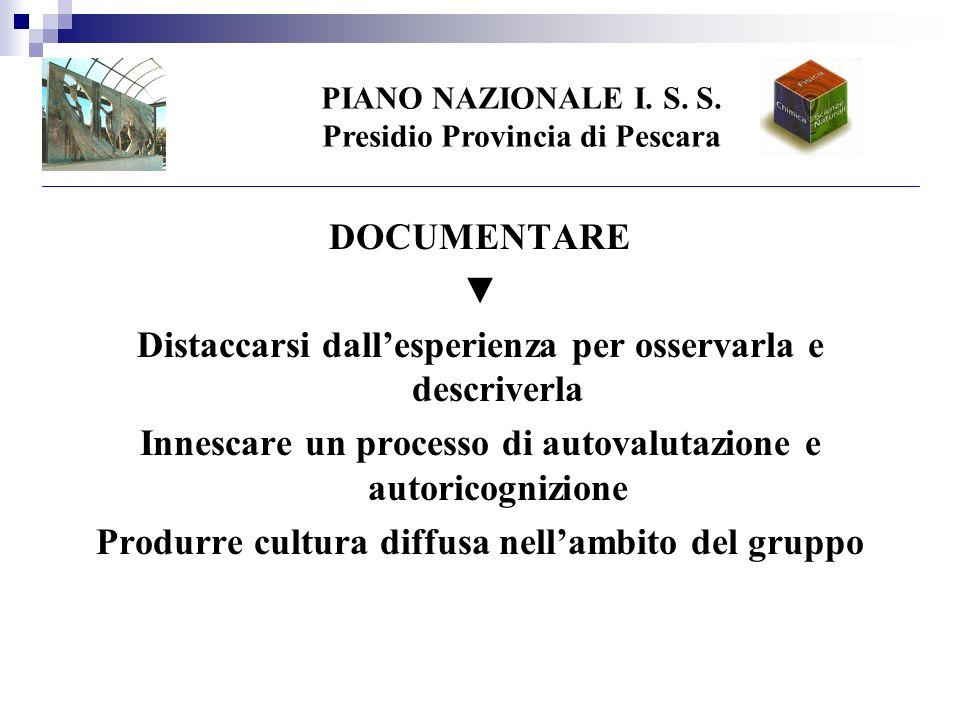 PIANO NAZIONALE I. S. S.