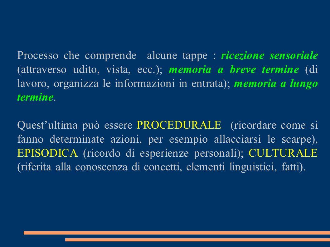 Processo che comprende alcune tappe : ricezione sensoriale (attraverso udito, vista, ecc.); memoria a breve termine (di lavoro, organizza le informazi