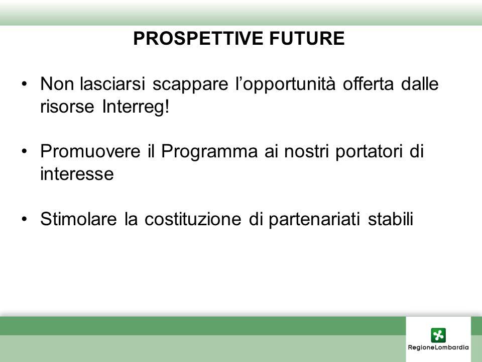 PROSPETTIVE FUTURE Non lasciarsi scappare lopportunità offerta dalle risorse Interreg! Promuovere il Programma ai nostri portatori di interesse Stimol