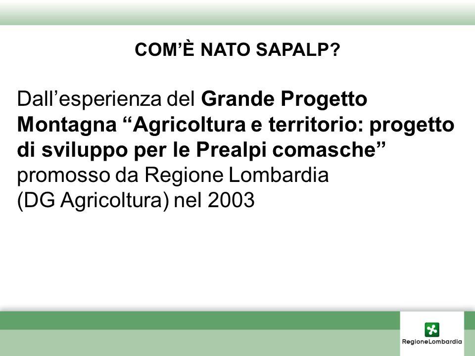COMÈ NATO SAPALP? Dallesperienza del Grande Progetto Montagna Agricoltura e territorio: progetto di sviluppo per le Prealpi comasche promosso da Regio