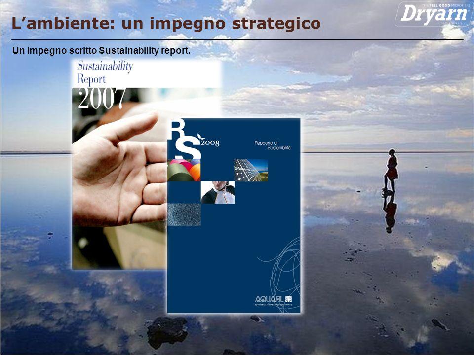 Pagina 12 Lambiente: un impegno strategico Un impegno scritto Sustainability report.