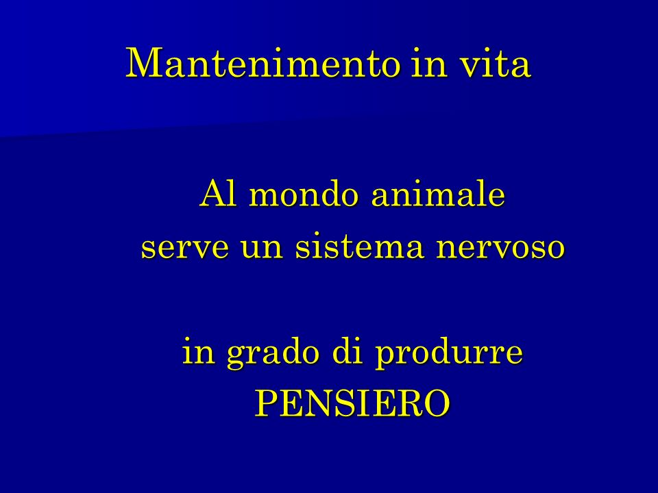 Mantenimento in vita Al mondo animale serve un sistema nervoso in grado di produrre PENSIERO