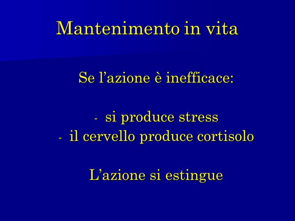 Mantenimento in vita Se lazione è inefficace: - si produce stress - il cervello produce cortisolo Lazione si estingue