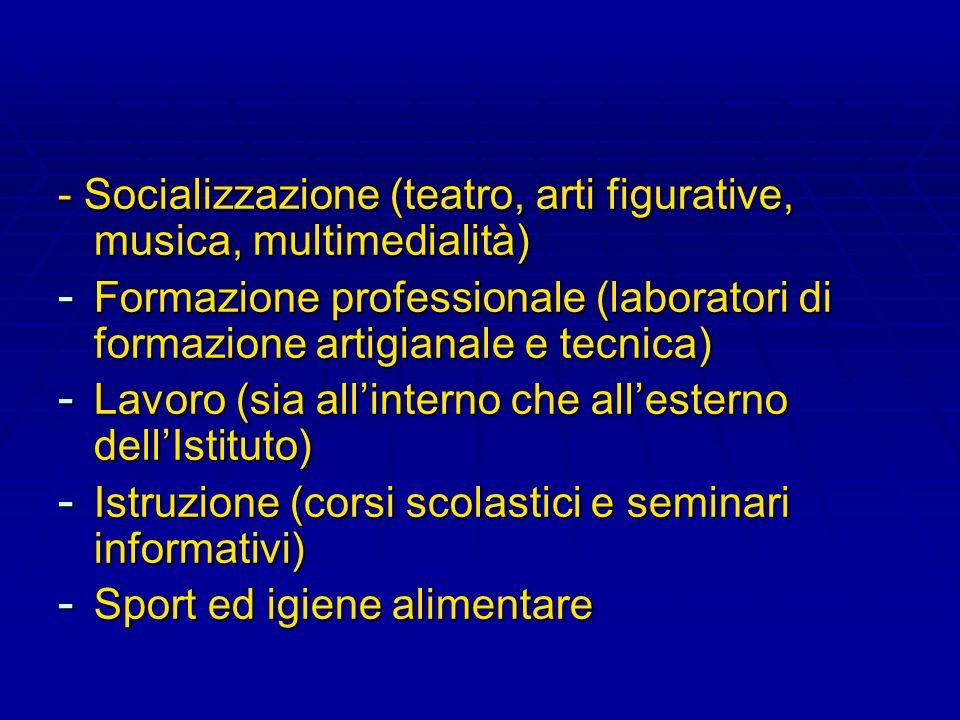 - Socializzazione (teatro, arti figurative, musica, multimedialità) - Formazione professionale (laboratori di formazione artigianale e tecnica) - Lavo