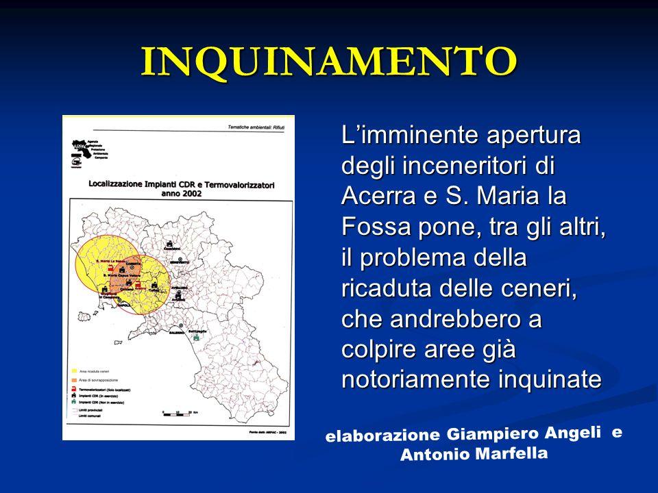 INQUINAMENTO Limminente apertura degli inceneritori di Acerra e S. Maria la Fossa pone, tra gli altri, il problema della ricaduta delle ceneri, che an