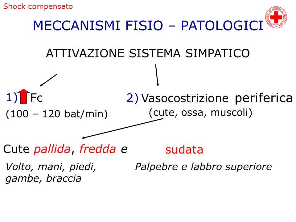 MECCANISMI FISIO – PATOLOGICI ATTIVAZIONE SISTEMA SIMPATICO 1) Fc (100 – 120 bat/min) 2) Vasocostrizione periferica (cute, ossa, muscoli) Cute pallida