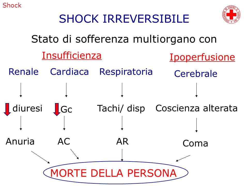 SHOCK IRREVERSIBILE Stato di sofferenza multiorgano con Insufficienza Ipoperfusione RenaleCardiacaRespiratoria diuresi Anuria Gc AC Tachi/ disp AR MOR