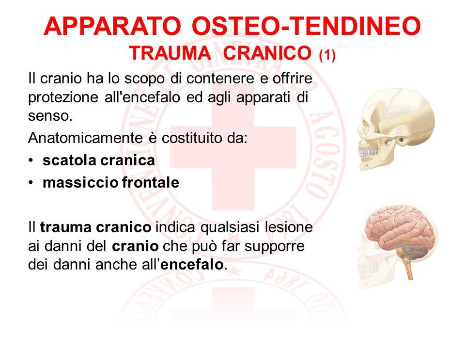 APPARATO OSTEO-TENDINEO TRAUMA CRANICO (2) Frattura delle ossa facciali: il maggiore rischio per linfortunato è il soffocamento per ostruzione delle vie aeree.