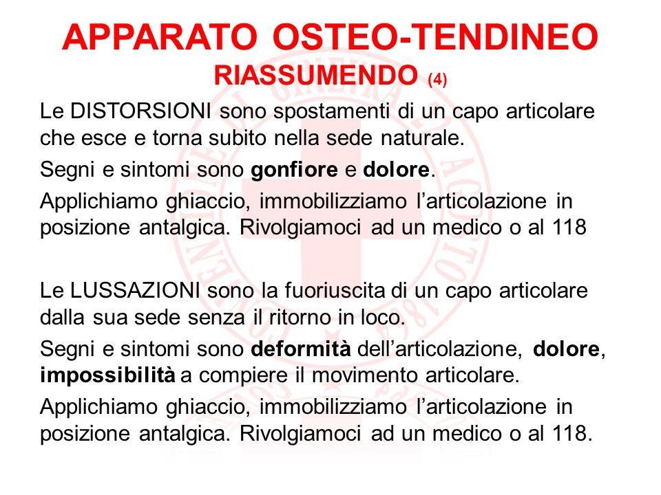 APPARATO OSTEO-TENDINEO RIASSUMENDO (5) LAMPUTAZIONE è il distacco di una parte del corpo o tessuto da seguito di un trauma o di un intervento chirurgico.