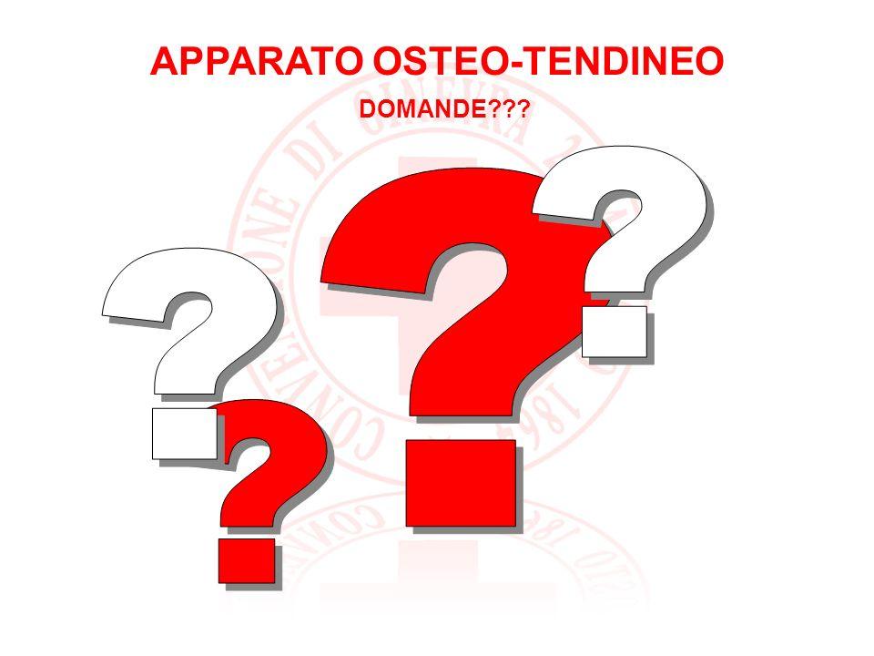 APPARATO OSTEO-TENDINEO AMPUTAZIONE GRAZIE PER… LATTENZIONE!