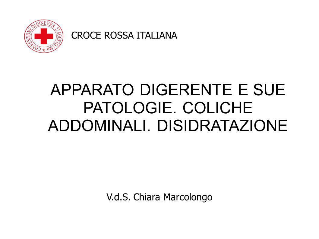 V.d.S. Chiara Marcolongo CROCE ROSSA ITALIANA APPARATO DIGERENTE E SUE PATOLOGIE. COLICHE ADDOMINALI. DISIDRATAZIONE