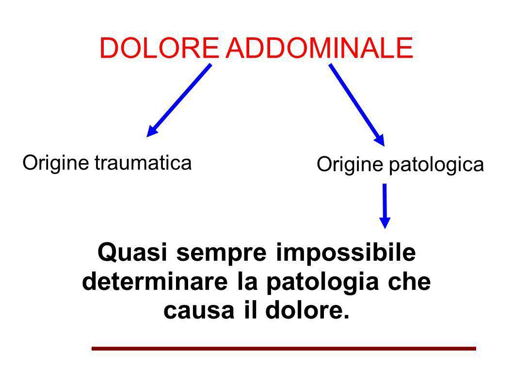 DOLORE ADDOMINALE Origine traumatica Origine patologica Quasi sempre impossibile determinare la patologia che causa il dolore.