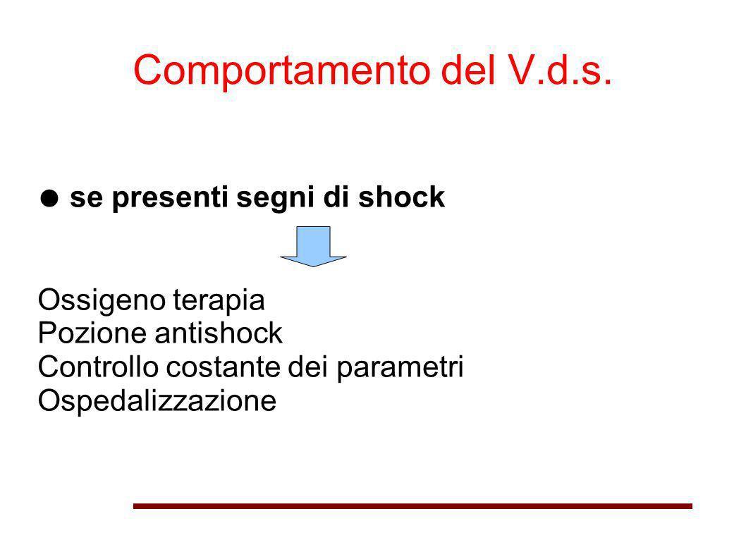 Comportamento del V.d.s. se presenti segni di shock Ossigeno terapia Pozione antishock Controllo costante dei parametri Ospedalizzazione
