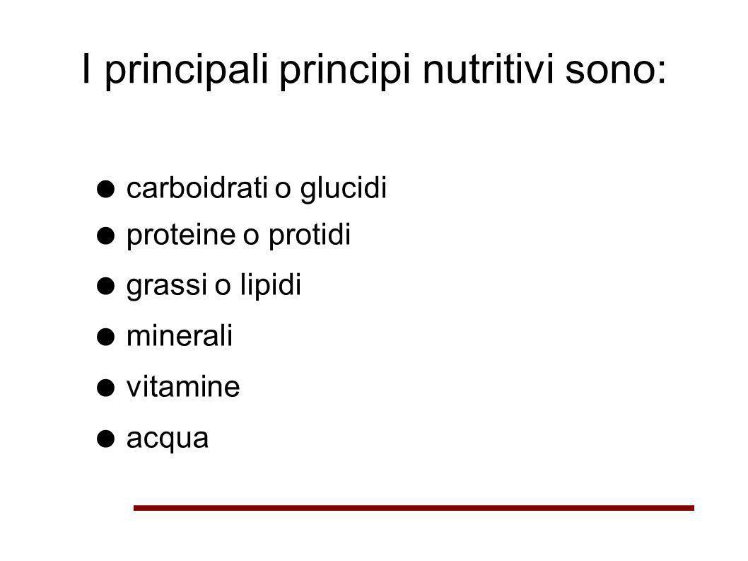 I principali principi nutritivi sono: carboidrati o glucidi proteine o protidi grassi o lipidi minerali vitamine acqua