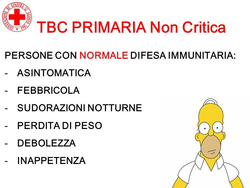 TBC PRIMARIA Non Critica PERSONE CON NORMALE DIFESA IMMUNITARIA: -ASINTOMATICA -FEBBRICOLA -SUDORAZIONI NOTTURNE -PERDITA DI PESO -DEBOLEZZA -INAPPETE