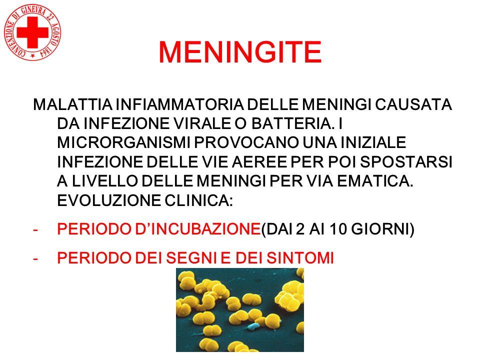 MENINGITE MALATTIA INFIAMMATORIA DELLE MENINGI CAUSATA DA INFEZIONE VIRALE O BATTERIA. I MICRORGANISMI PROVOCANO UNA INIZIALE INFEZIONE DELLE VIE AERE