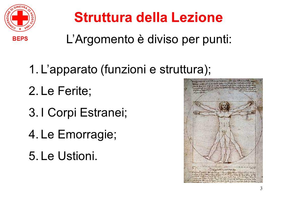 3 BEPS Struttura della Lezione LArgomento è diviso per punti: 1.Lapparato (funzioni e struttura); 2.Le Ferite; 3.I Corpi Estranei; 4.Le Emorragie; 5.L