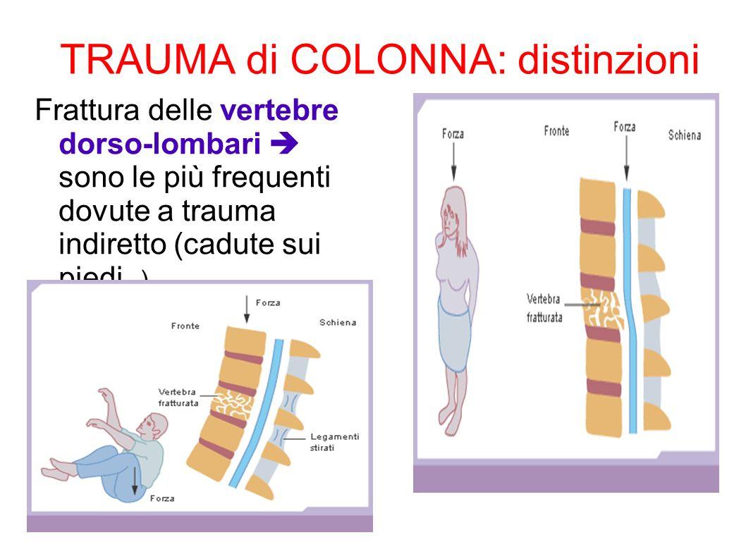 TRAUMA di COLONNA: distinzioni Frattura delle vertebre dorso-lombari sono le più frequenti dovute a trauma indiretto (cadute sui piedi.. )