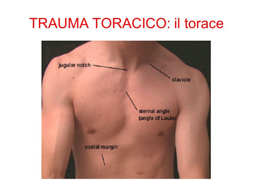 TRAUMA TORACICO: il torace