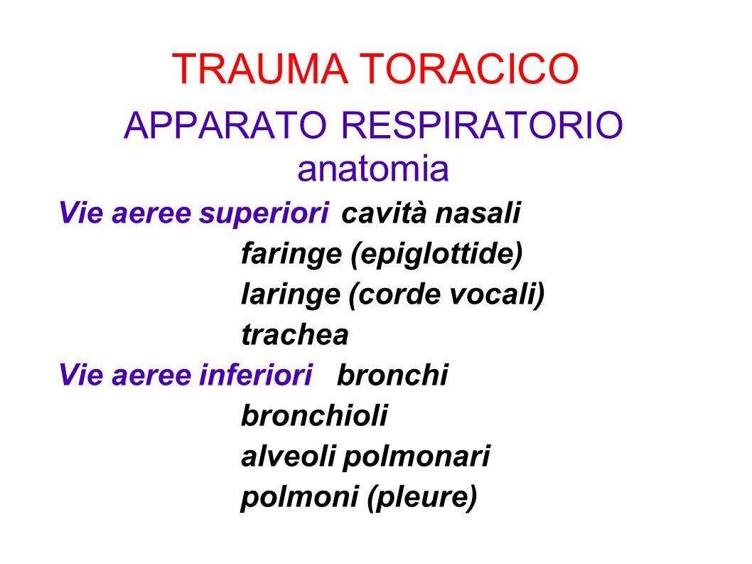 APPARATO RESPIRATORIO anatomia Vie aeree superioricavità nasali faringe (epiglottide) laringe (corde vocali) trachea Vie aeree inferiori bronchi bronc