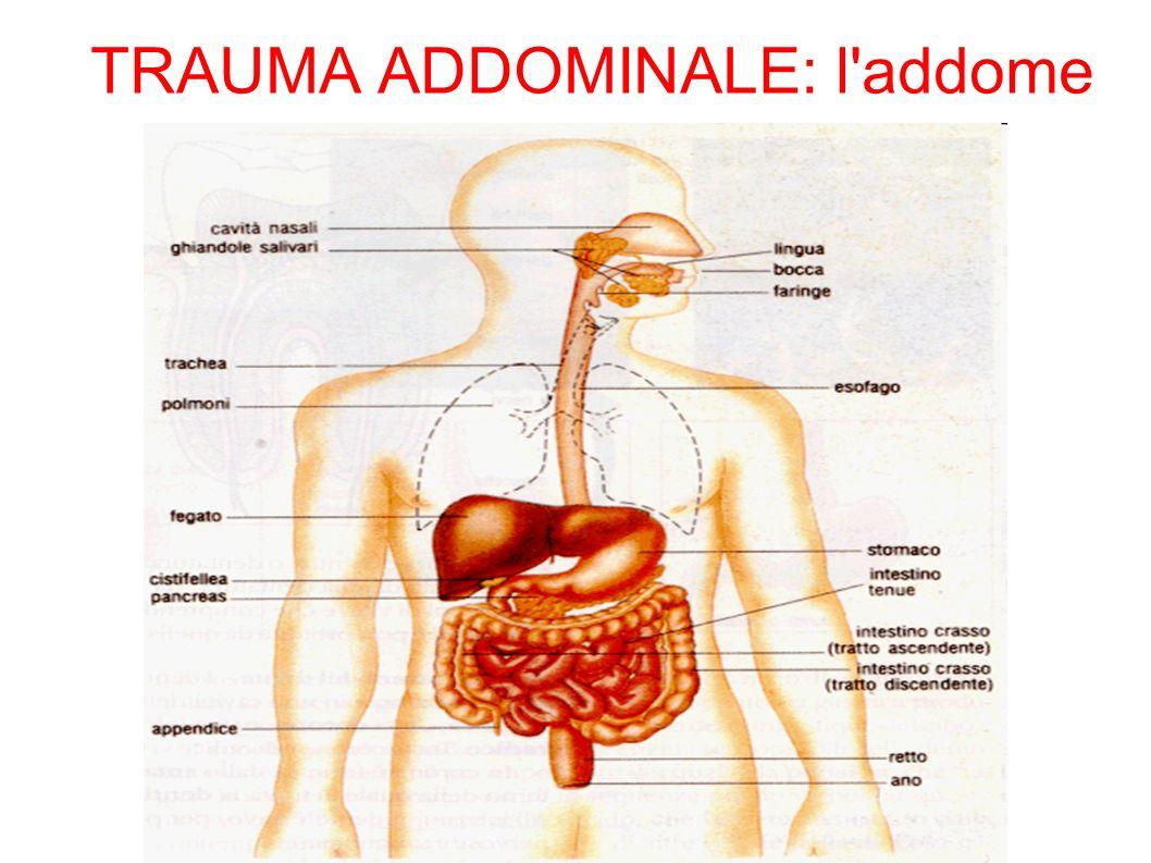 TRAUMA ADDOMINALE: l'addome