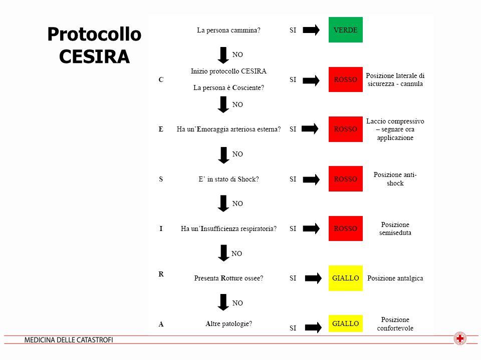 Protocollo CESIRA