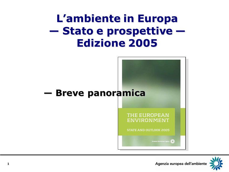 2 La relazione Lambiente inEuropa Stato e prospettive Edizione 2005 È la terza relazione dellAEA su stato e prospettive La relazione precedente è stata pubblicata nel 1999 Contribuisce alla programmazione e alla valutazione delle politiche ambientali dellUE Nelledizione 2005 figurano nuovi elementi