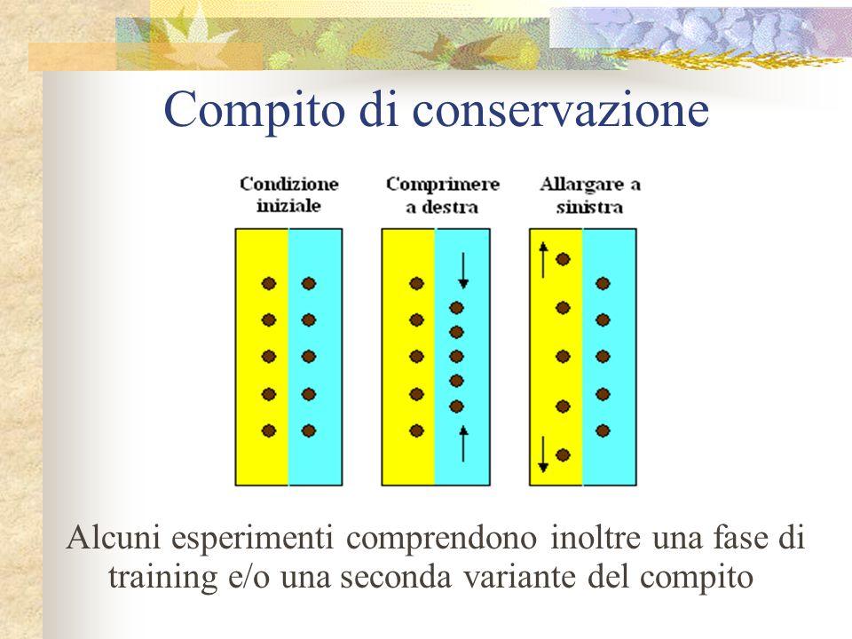 Compito di conservazione Alcuni esperimenti comprendono inoltre una fase di training e/o una seconda variante del compito