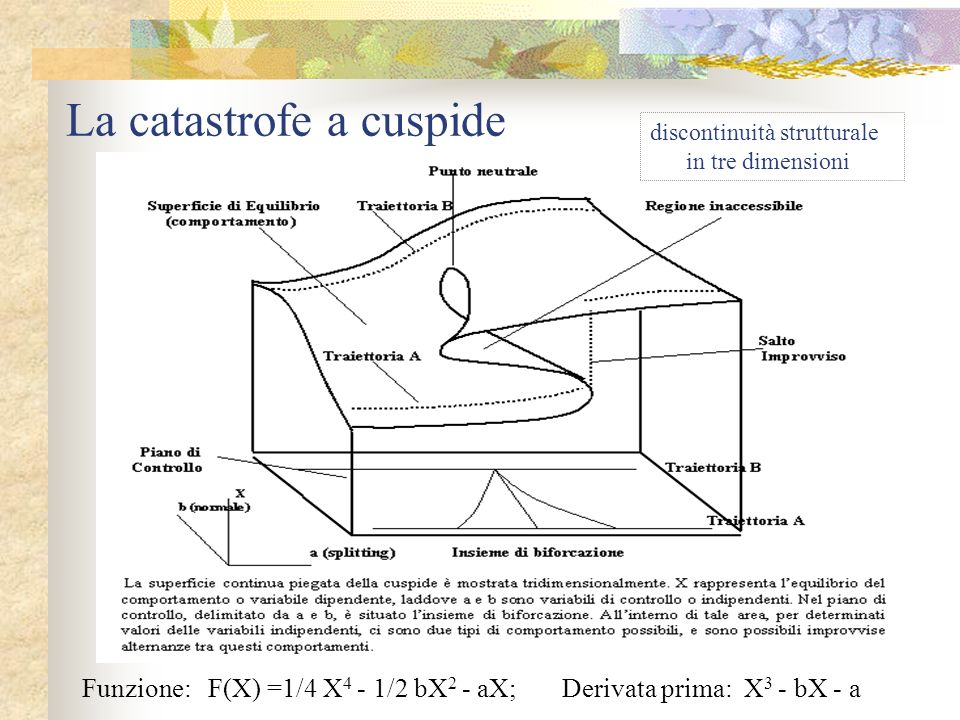 La catastrofe a cuspide Funzione: F(X) =1/4 X 4 - 1/2 bX 2 - aX; Derivata prima: X 3 - bX - a discontinuità strutturale in tre dimensioni