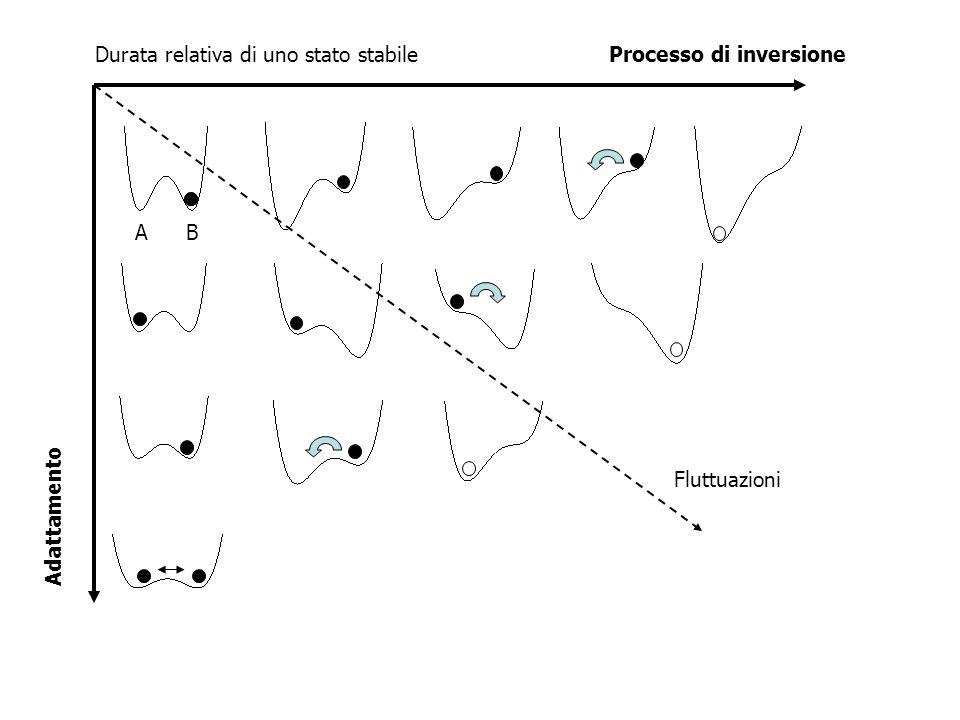 Fluttuazioni AB Durata relativa di uno stato stabileProcesso di inversione Adattamento