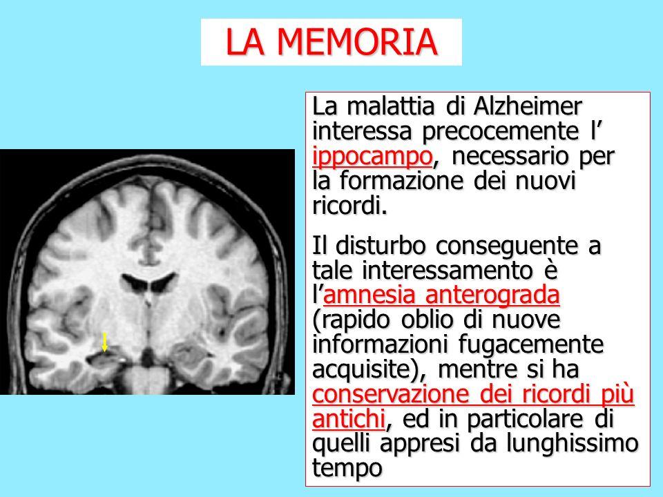 La malattia di Alzheimer interessa precocemente l ippocampo, necessario per la formazione dei nuovi ricordi. Il disturbo conseguente a tale interessam