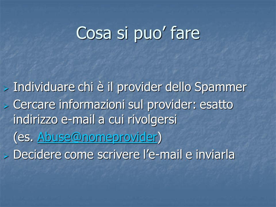 Cosa si puo fare Individuare chi è il provider dello Spammer Individuare chi è il provider dello Spammer Cercare informazioni sul provider: esatto indirizzo e-mail a cui rivolgersi Cercare informazioni sul provider: esatto indirizzo e-mail a cui rivolgersi (es.
