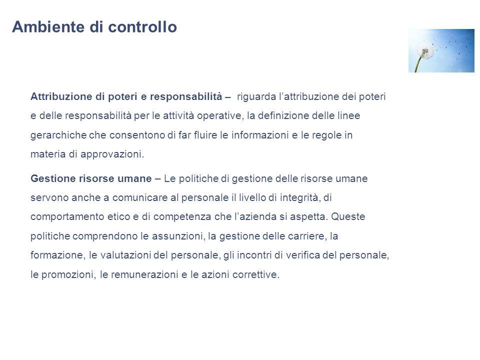 Ambiente di controllo Attribuzione di poteri e responsabilità – riguarda lattribuzione dei poteri e delle responsabilità per le attività operative, la